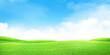 Leinwandbild Motiv Green grass field and blue sky with bright sun summer landscape background