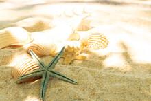 Seashells And Starfish On The ...
