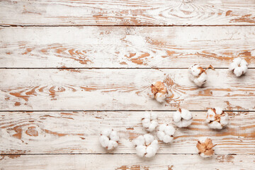 Beautiful cotton flowers on wooden background