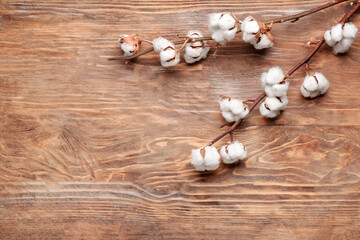 Beautiful cotton branch on wooden background