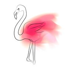 Contour Flamingo With Pink Pai...