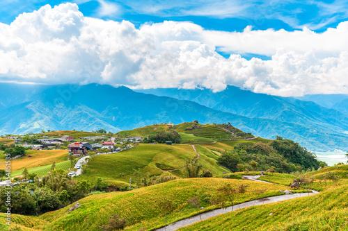 Fototapeta Daylily flower farm at Liushidan Mountain in Hualien, Taiwan