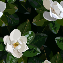 Seamless Pattern With Magnolia Leaves And Flowers