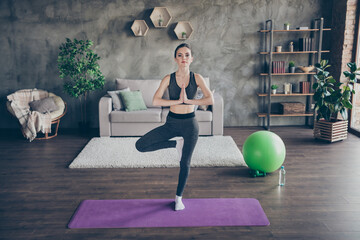 Full size photo of focused inspired active athlete girl train asana aura exercise meditate stand one leg mat in house indoors