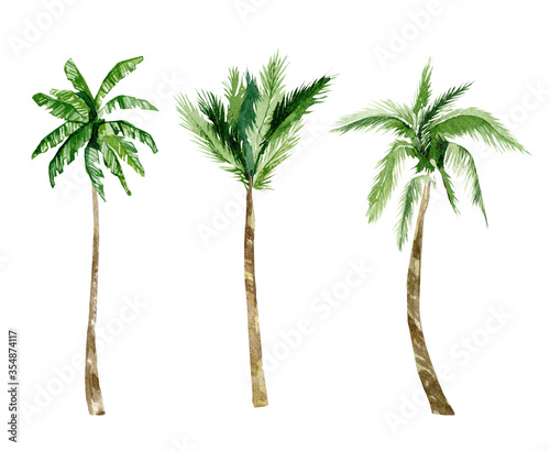 Watercolor tropical trees, plant. Summer palm trees jungle illustration for the banner, frame, border, logo, greeting card, party card, wedding invintation, baby shower card Wall mural