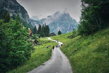 Landscape Panorama Near Seealp...