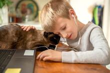 A Boy Cuddles With A Cat