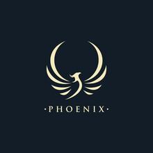 Phoenix Wing Logo Animal Abstrac