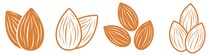 Almond Icon Set. Nut Vector Il...