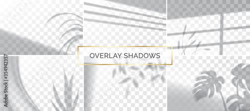 Obraz Set of shadows, overlay effects mock up, window frame and leaf of plants, natural light, vector illustration. - fototapety do salonu