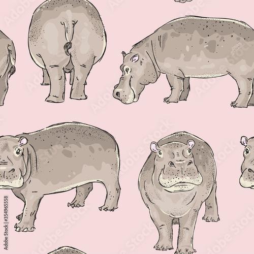 Seamless pattern with hand drawn hippopotamus Wallpaper Mural