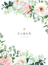 Elegant Floral Vector Card With White And Creamy Woody Peony, Dusty Rose Flower