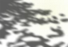Abstract Summer Sunlights Background. Vector Gray Foliage Shadow Overlay With Light Bokeh. Natural Leaves Tree Branch