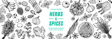 Herbs And Spices Hand Drawn Ve...