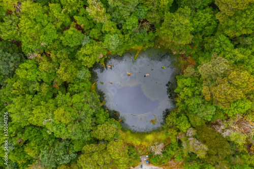 Fényképezés Aerial view of a sinkhole at Tarkine forest in Tasmania, Australia