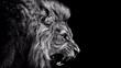 lion on black background