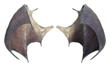 3D Rendered Devil Wings Isolat...