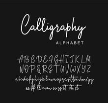 Handwritten Calligraphy Script...