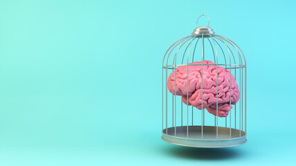 Brain on a cage