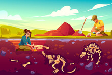 Archaeologists, Paleontology Scientists Working On Excavations Digging Soil Layers With Shovel And Exploring Founded Artifacts, Studying Dinosaurs Fossil Skeletons Bones Cartoon Vector Illustration