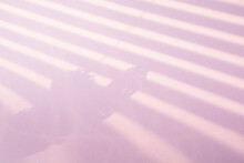 Reflection Of Strips Of Blinds And Branches Of Lilac In A Vase On A Light Purple Background