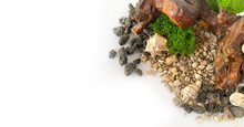 Sea Pebbles, Shells, Stabilized Moss And Wooden Driftwood On A White Isolated Background. Volcanic Stones.