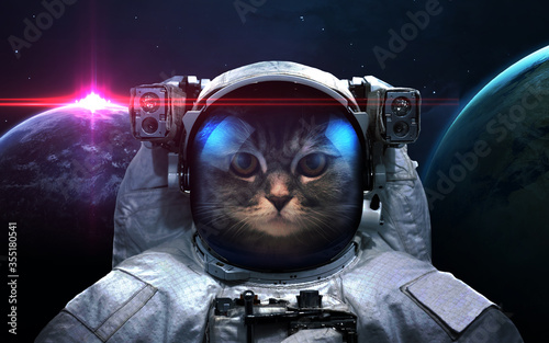 Fotografía Cat astronaut in space