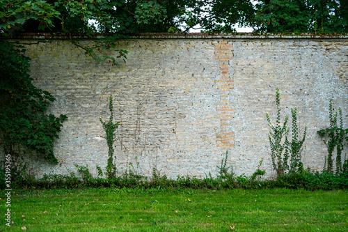 Walled Garden Fototapet