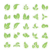 Leaf Flat Icon Pack
