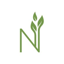 Letter N Plant Logo