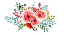 Watercolor Red Poppy Flower Cl...