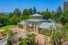 Palm House At Botanic Garden I...