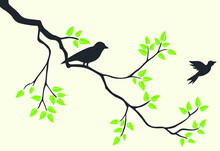 My Wonderful Walls Birds And ...