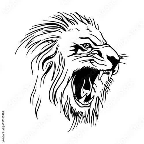 Fototapety, obrazy: lion head vector