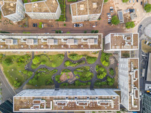 Aerial View Of Rooftop Garden In Urban Residential Area.