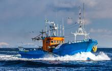 Fishing Boat Returns After Fishing To Its Port. Japan. The Water Area Of Hokkaido. Kunashir Strait. Sea Of Okhotsk.