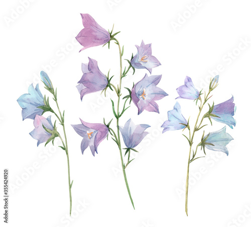 Photo Beautiful image with watercolor gentle bluebell flowers