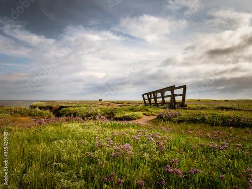 Billede på lærred Sea Lavender Bridge