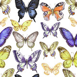 Hand-drawn watercolor seamless pattern, print. Multi-colored butterflies, insects, animals. Wildlife, spring, summer. Vintage, retro style, realism, sketch.