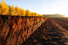 Rows Of Cutted Peat In Northwe...