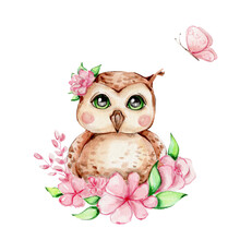 Cute Owl With Pink Flowers And Butterfly; Watercolor Hand Draw Illustration; Can Be Used For Card And Invitation; With White Isolated Background