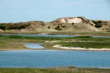 Dunes And Water, Zwin, Border Between Belgium And The Netherlands