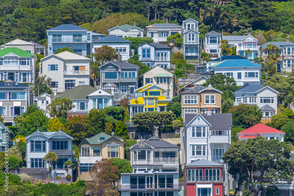 Fototapeta Traditional residential houses at Mount Victoria in Wellington, New Zealand