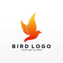 Abstract Bird Logo Design Vect...