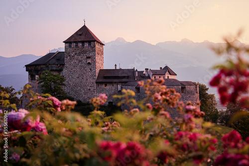 Leinwand Poster Vaduz Royal castle in Liechtenstein