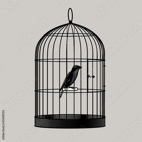 Tela Engraved drawing of a bird sitting inside a cage