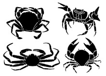 Graphical Set  Of Crabs Isolat...