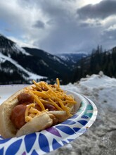Chili Cheese Hot Dog In The Rocky Mountains In Colorado
