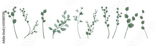 Fotografie, Obraz Art watercolor natural branches leaves elements