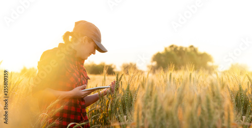 A woman farmer examines the field of cereals and sends data to the cloud from the tablet Fototapete
